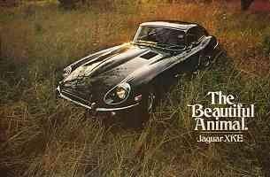 Jaguar E-type Serie 2 Fixed Head Coupé 4.2 litre